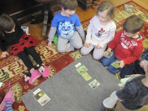 sorting plants and animals