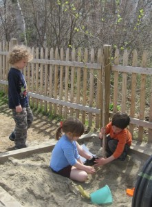 planting a tree in the sand box