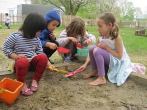 tending the sandbox plant
