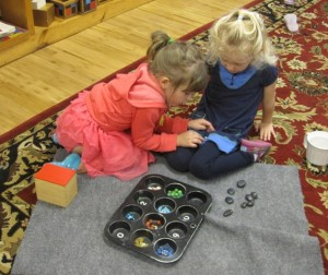 counting tray teamwork