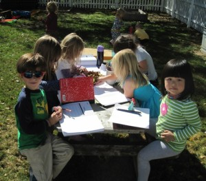 recording our observations