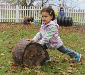 pushing the log