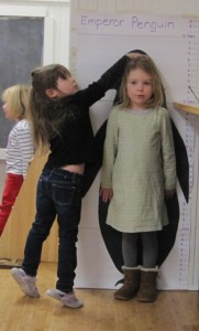 How tall compared to an Emperor Penguin?