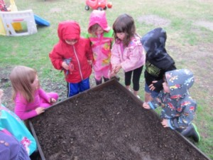 finding earthworms and putting them in the garden